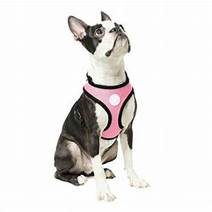 Voyager Harness Size Chart Gooby Choke Free X Frame Soft Harness With Micro Suede