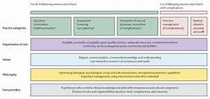 The Framework For Quality Maternal And Newborn Care  Maternal And