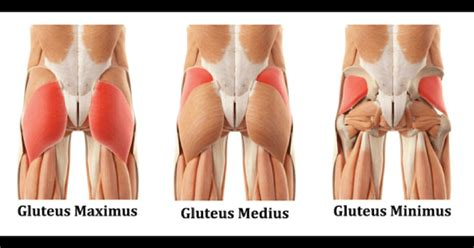 Target The Glute Muscles With These 10 Stretches For Back