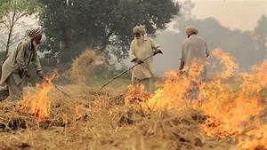 Alternatives, To, Stubble, Burning, Not, Only, Possible, But, Profitable, Shows, Study