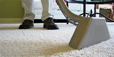 Home [wwwprocleancarpetcarecom]. Schools That Offer Sports Management Degrees. Best Photography Schools In The Us. Profit Sharing Vs 401k Laser Printer Supplies. Top Forensic Accounting Schools. Fertility Clinics In New Jersey. Commercial Print Agencies N Y C. Small Business Management Courses Online. How To Build A Website For A Small Business