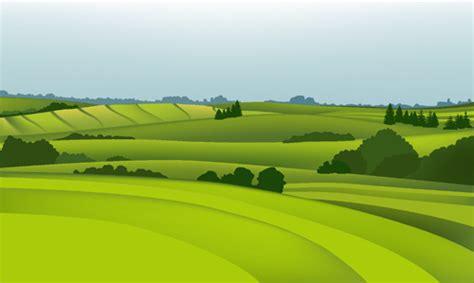 field landscape  vector    vector