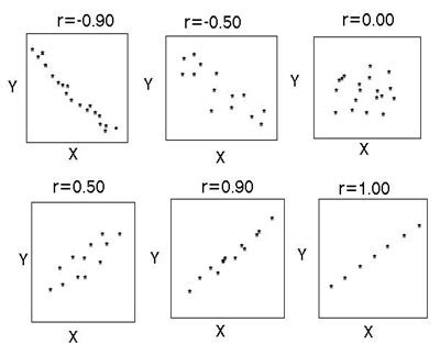 Positive And Negative Numbers Worksheet Correlation Simply Psychology