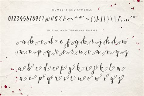 5 Gorgeous, Calligraphy Fonts From Genesis Lab