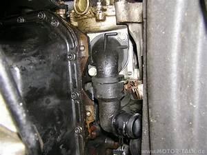 Thermostat Golf 4 : pa287934 wie wechselt man das thermostat beim golf iii aam vw golf 3 204001892 ~ Gottalentnigeria.com Avis de Voitures