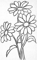 Coloring Flower Pages Embroidery Designs Must Stained Glass Margarita sketch template
