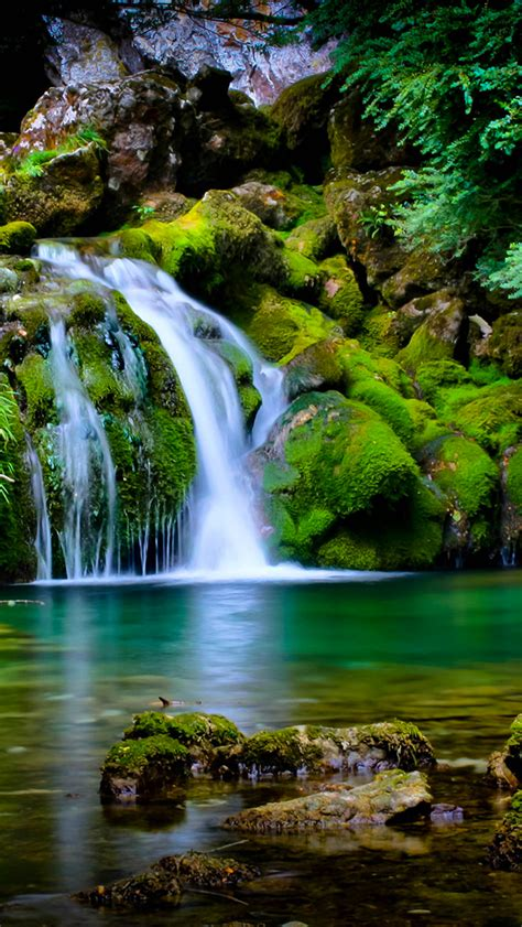 Wallpaper Iphone 7 Water Fall by Waterfall Forest Wallpaper For Iphone X 8 7 6 Free