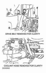 2002 Nissan Sentra Serpentine Belt Routing And Timing Belt