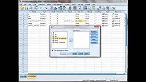 Spss  Renaming Labeling Variables Values