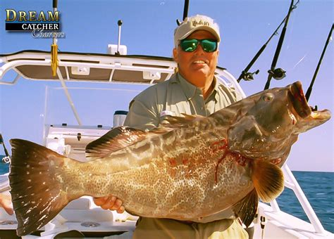 grouper west fishing key plug reef awesome been trolled caught angler capt steven holding nice