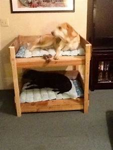 dog bunk bed dog and cat furniture pinterest beds dogs With cat and dog furniture