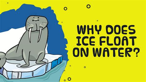 Why does ice float on water?  Kids Video Show YouTube