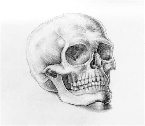 How Draw Skull Drawings Paintings