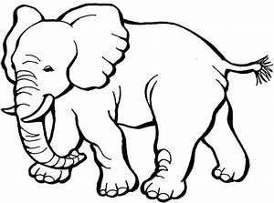 Elefante Para Colorear HD