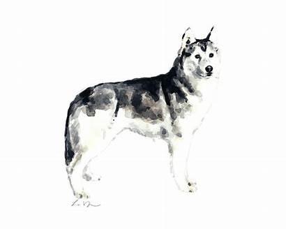 Laura Siberian Husky Row Dog Painting 24th