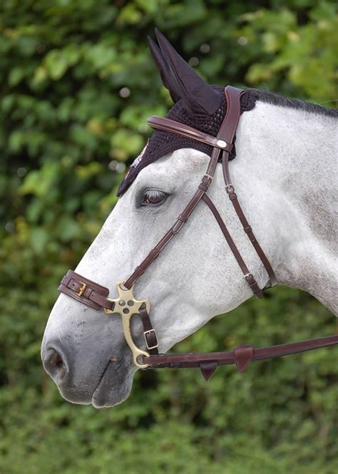 bridle hackamore horse english tack bitless dy bit horses mechanical strap noseband pony riding leather equestrian less dyon saddle equipment