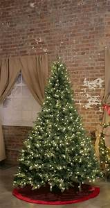 Control Christmas Lights Online Tis Your Season 7 Ft To 10 Ft Led Pre Lit Adjustable