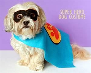 Easy DIY Doggy Halloween Costumes - Supreme Source