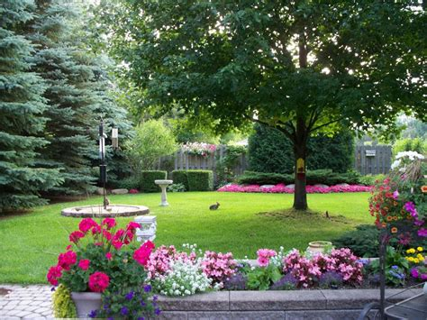 Backyard Privacy Landscaping by Planting For Privacy Landscaping Ideas And Hardscape
