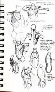 Concept Design Academy   U0026quot Sculptural Anatomy U0026quot  With Bryan