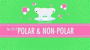 Polar  U0026 Non