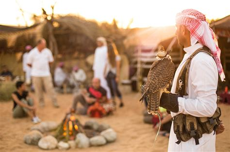 Bedouin Life, Falconry, and Wildlife Drive by Platinum ...