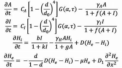 Algebra General Random