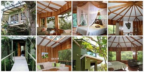 boutique canap canopy tree houses boutique hotel