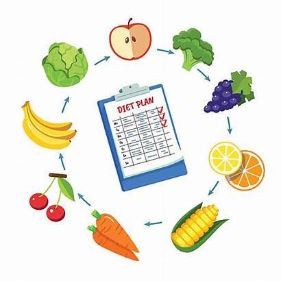 Plan Meal Clip Vector Diet Illustrations Schedule