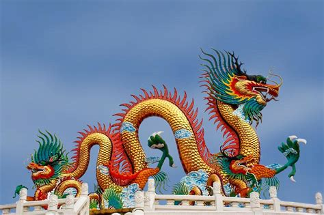 aussehen und lebensweise chinesischer drachen teil iv