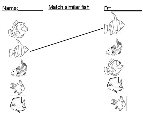 fish activities for preschool fish matching activity