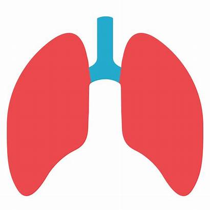 Clipart Lungs Pulmonology