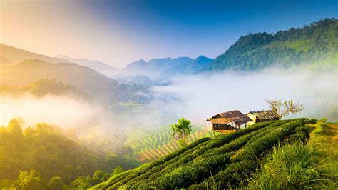 The kingdom of rails: Is the best way to see Thailand by ...