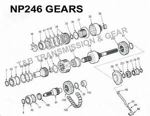 Np246 Transfer Case Parts