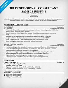 hr professional consultant resume resumecompanioncom With professional resume consultant