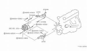 Nissan Hardbody Alternator Wiring Diagram