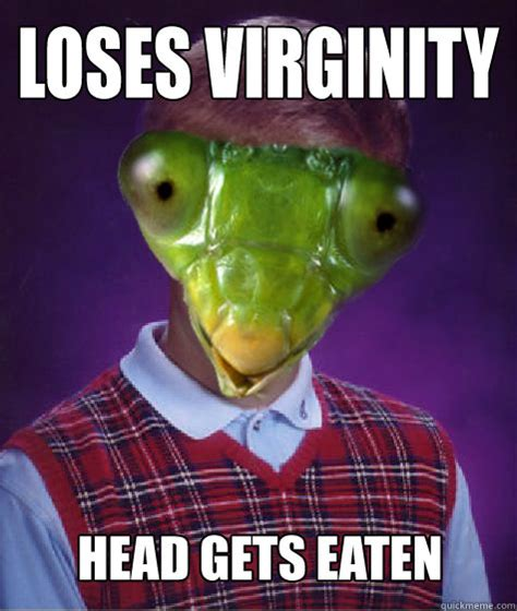 Mantis Meme - bad luck praying mantis quickmeme