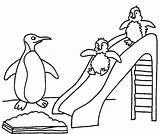 Penguins sketch template
