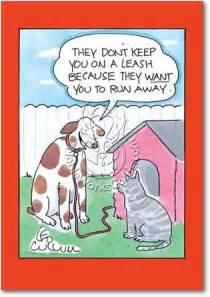 Funny Happy Birthday Cat Cartoon