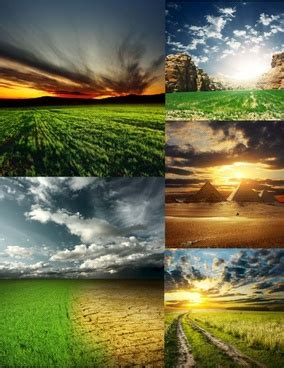 natural image   stock