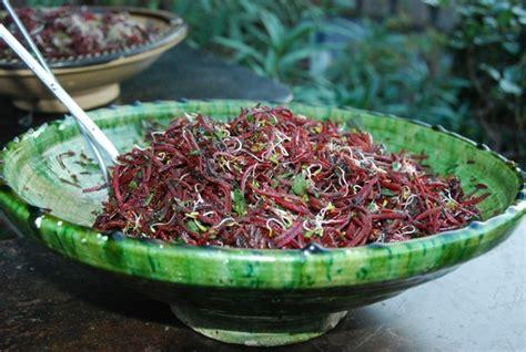 cuisine plantes sauvages comestibles stage plantes sauvages comestibles et cuisine