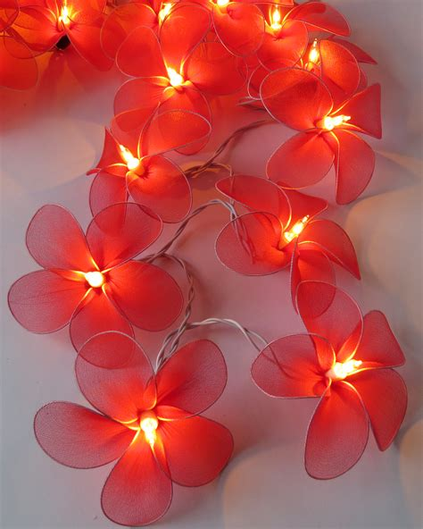 Flower Fairy Lights  Flowers Ideas For Review