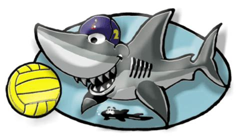 water-polo-shark-logo.pdf (image)