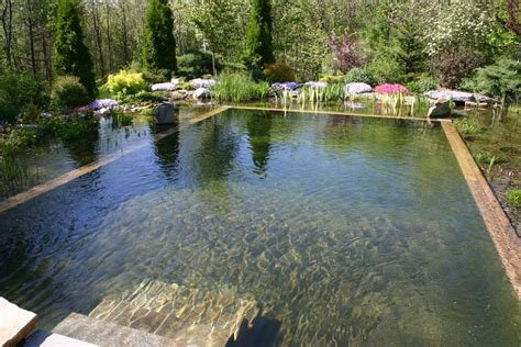 Swimming Pond : 67 Cool Backyard Pond Design Ideas