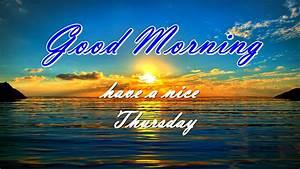 Good morning Thursday | selmasgallery