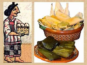Basic Aztec facts: AZTEC FOODS