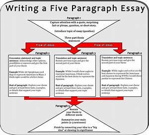 Essay helper paragraph basics of essay writing essay helper