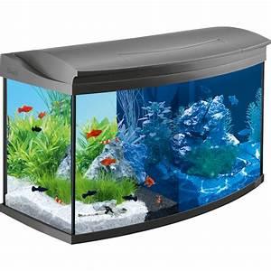 Aquarium Set Led : tetra aquaart led aquarium 100l complete set ~ Watch28wear.com Haus und Dekorationen