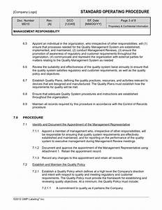 Management responsibility sop template md10 gmp qsr for Sales sop template