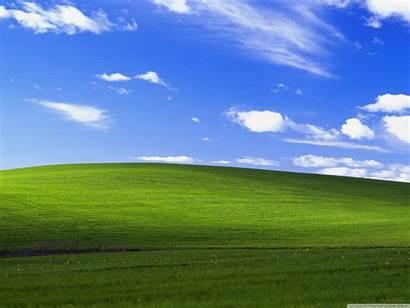 Xp Windows Standard Desktop Background Wallpapers 4k
